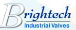 Brightech Valves and Controls Pvt. Ltd.